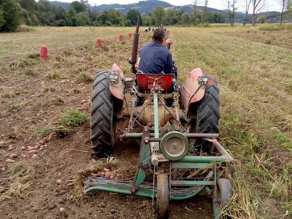 Novi podsticaji za mlade poljoprivrednike, i do 1.500.000 dinara bespovratno