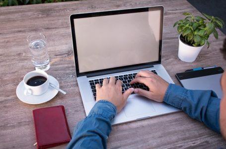 Zaposleni koji rade od kuće mogu da iskoriste stari godišnji odmor do kraja juna