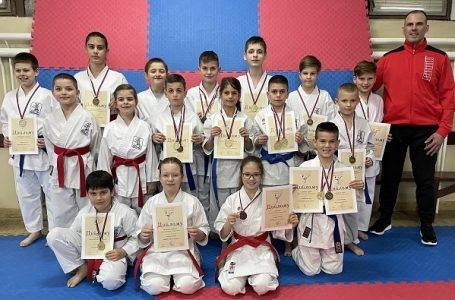"Prvenstvo regiona: 15 medalja za karatiste ""Milanovca"""