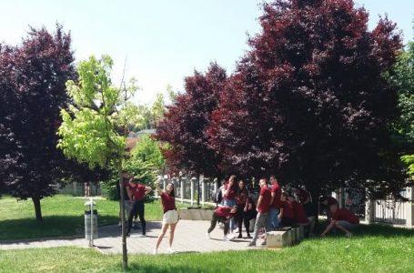 Me(n)talna ograda: Kakve izazove pandemija stavlja pred tinejdžere